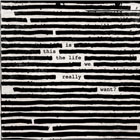 roger waters is this the life we really want m